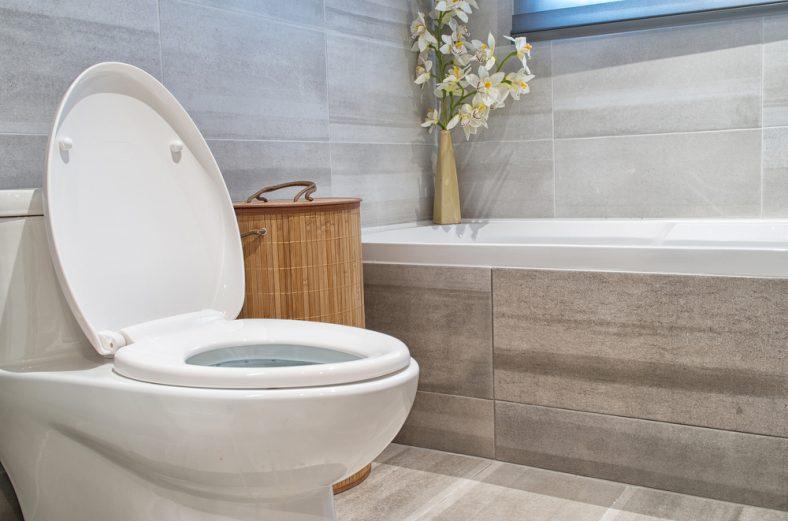 Clean Toilet Seat Hinges