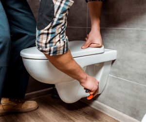 How to Remove Toilet Seat with Hidden Fixings And Bolts