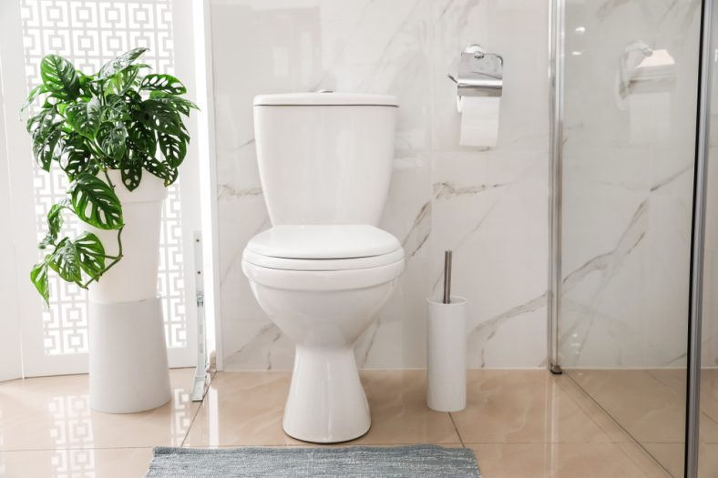 What to Do When Something Important Gets Flushed