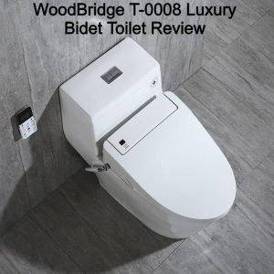 WoodBridge T-0008 Luxury Bidet Toilet Review