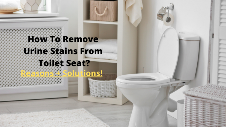 How To Remove Urine Stains From Toilet Seat